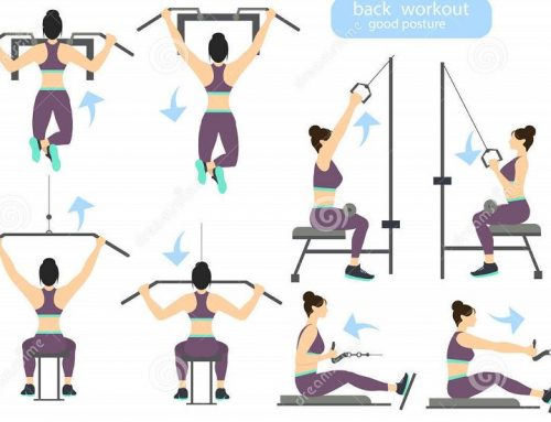 Back workouts : Benefits and Examples