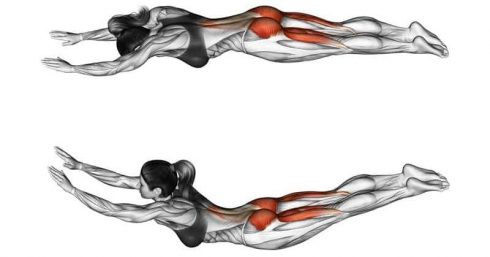 lower back workouts at home