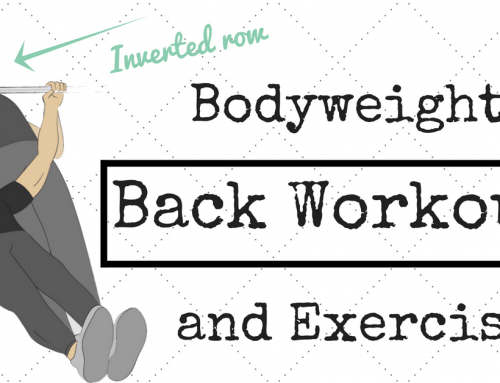 Interesting fact about Bodyweight back exercises