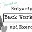 bodyweight back exercises (no equipment)