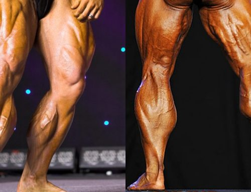 Calf workouts : calf muscle exercises