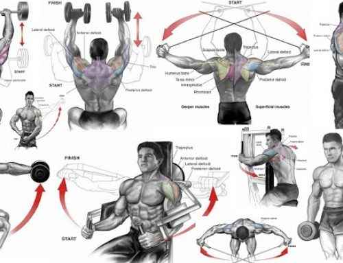 Dumbbell shoulder workout : dumbbell shoulder exercises