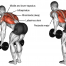 deltoid workouts
